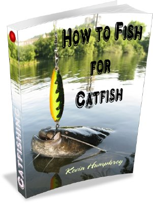 How To Fish For Catfish