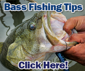 Bass Fishing Tips and Techniques